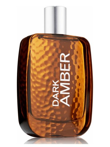 Bath and Body Works Dark Amber for Men Erkek Parfümü