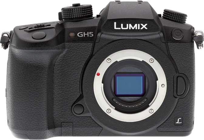 Canon EOS M6 Mark II vs Panasonic Lumix DC-GH5