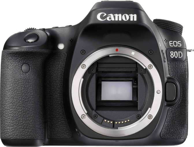 Canon EOS Rebel SL2 + Canon EF-S 18-55mm f/4-5.6 IS STM vs Canon EOS 80D