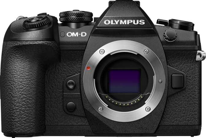 Canon EOS 6D Mark II vs Olympus OM-D E-M1 Mark II