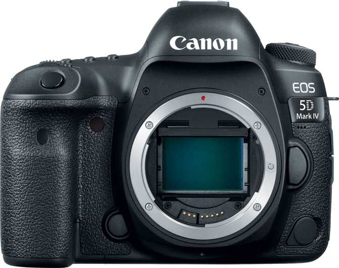 Canon EOS 6D Mark II vs Canon EOS 5D Mark IV