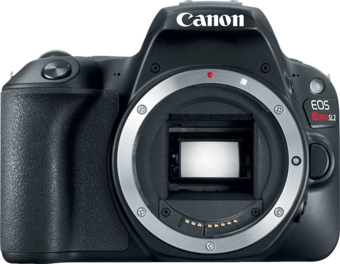 Canon EOS 6D Mark II + Canon EF 24-105mm F/3.5-5.6 IS STM vs Canon EOS 200D
