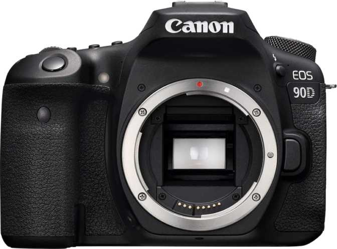 Canon EOS 6D Mark II + Canon EF 24-105mm F/3.5-5.6 IS STM vs Canon EOS 90D