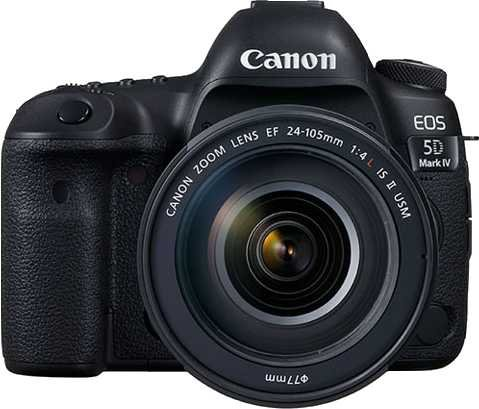 Canon EOS 250D vs Canon EOS 5D Mark IV + Canon EF 24-105mm f/4L IS USM