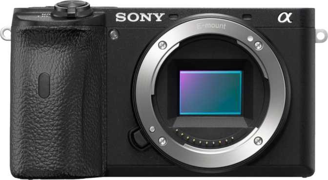 Sony ZV-1 vs Sony a6600 + Sony E 18-135mm F3.5-5.6 OSS
